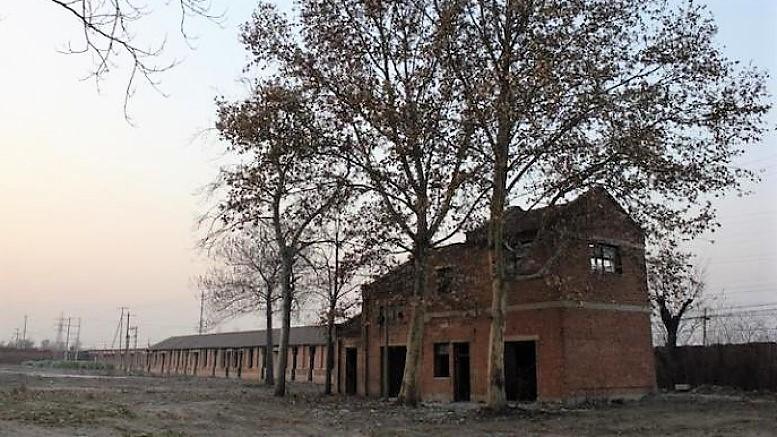 фабрика Xingtai 114